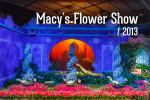 Видео / Macy's Flower Show 2013. Цветочная выставка в Macy's Чикаго.