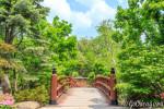 Японские сады Андерсона / Anderson Japanese Gardens