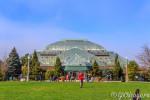 Оранжерея в Линкольн парке / Lincoln Park Conservatory Чикаго