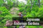 Видео / Японские сады Андерсона около Чикаго