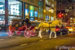 Работа лошадей в Чикаго теперь регламентированна законом