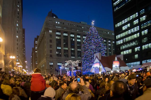 Чикаго ищет новогоднюю ель для 100й годовщины