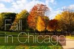 Осень в Ботаническом саду Чикаго