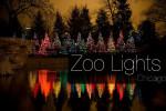 Zoo Lights Chicago | Фестиваль огней в зоопарке Чикаго